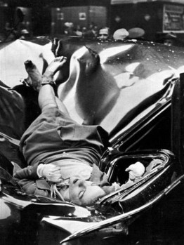 Evelyn Mchale after she fell to her death